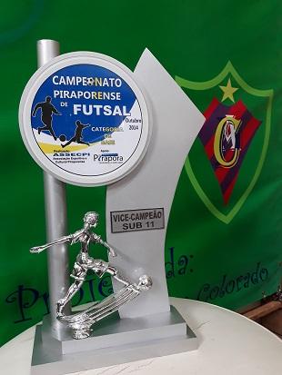 Campeão Sub-11 - 2014
