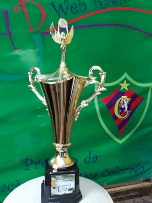 Vice-Campeão Taça Palimontes/Unimontes Cat. Mirim - 2013